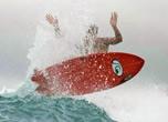 Tavola surf FISH