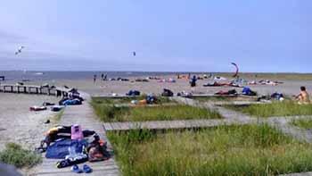 Spiaggia della Boschettona a Conche di Codevigo