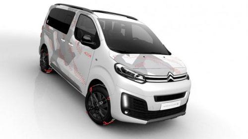 Citroën e Rip Curl, un van ad hoc per il surf
