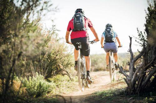 Syncro 10 Lo zaino da bici con schienale ventilato