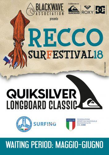 Quiksilver Longboard Classic