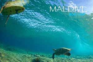 Partenza di gruppo |Boat Trip Maldive - Male Nord